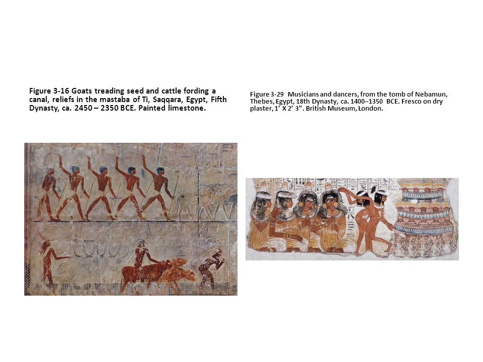 Figure 3-16 Goats treading seed and cattle fording a canal, reliefs in the mastaba of Ti, Saqqara, Egypt, Fifth Dynasty, ca. 2450 – 2350 BCE. Painted