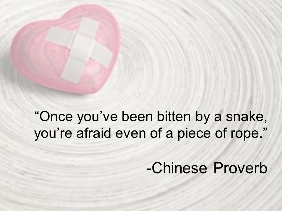 """Once you've been bitten by a snake, you're afraid even of a piece of rope."" -Chinese Proverb"