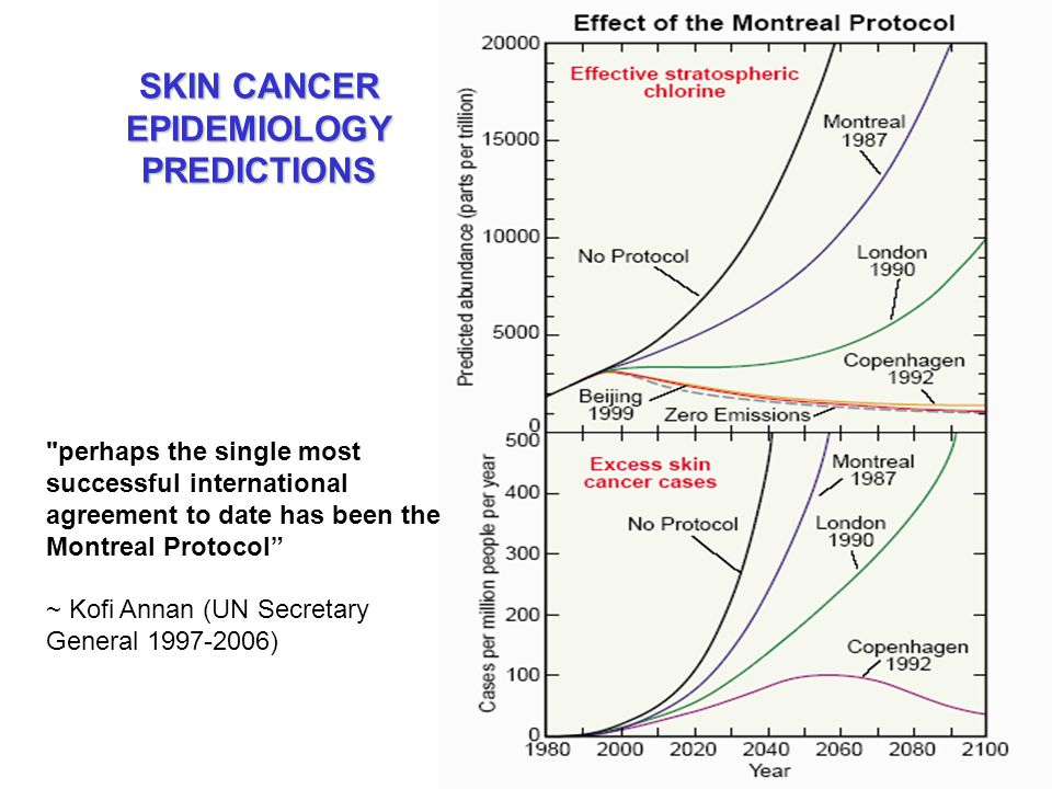 SKIN CANCER EPIDEMIOLOGY PREDICTIONS perhaps the single most successful international agreement to date has been the Montreal Protocol ~ Kofi Annan (UN Secretary General 1997-2006)
