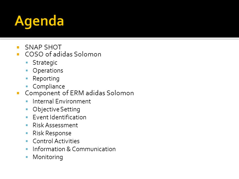  SNAP SHOT  COSO of adidas Solomon  Strategic  Operations  Reporting  Compliance  Component of ERM adidas Solomon  Internal Environment  Objective Setting  Event Identification  Risk Assessment  Risk Response  Control Activities  Information & Communication  Monitoring