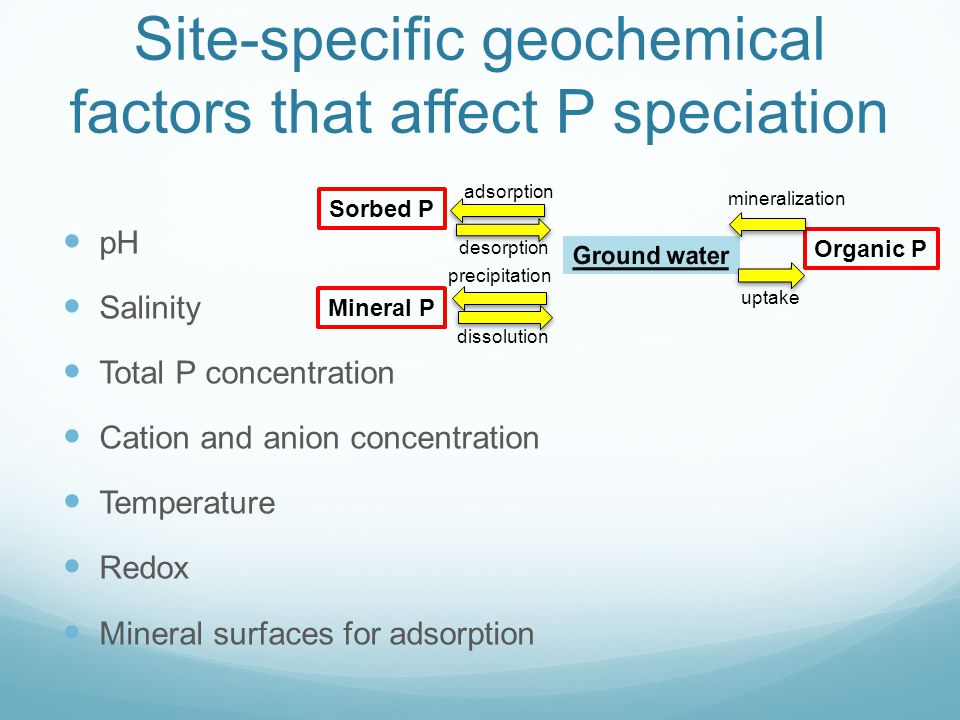 Site-specific geochemical factors that affect P speciation pH Salinity Total P concentration Cation and anion concentration Temperature Redox Mineral surfaces for adsorption Mineral P Organic P Sorbed P mineralization uptake precipitation dissolution adsorption desorption