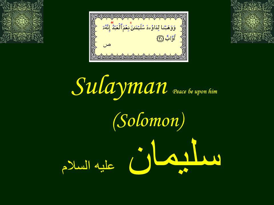 Sulayman Peace be upon him (Solomon) سليمان عليه السلام ص
