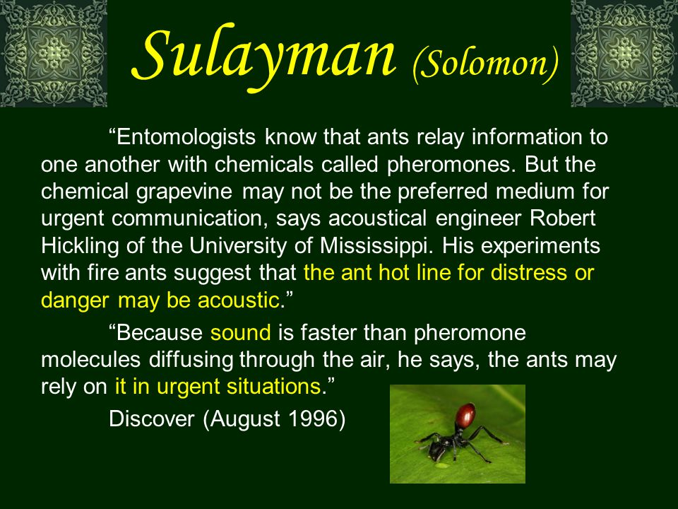 Entomologists know that ants relay information to one another with chemicals called pheromones.
