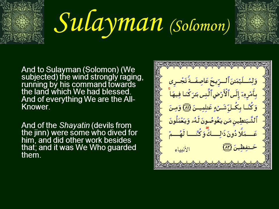 Sulayman (Solomon) [Sulayman (Solomon)] said: We shall see whether you speak the truth or you are (one) of the liars.