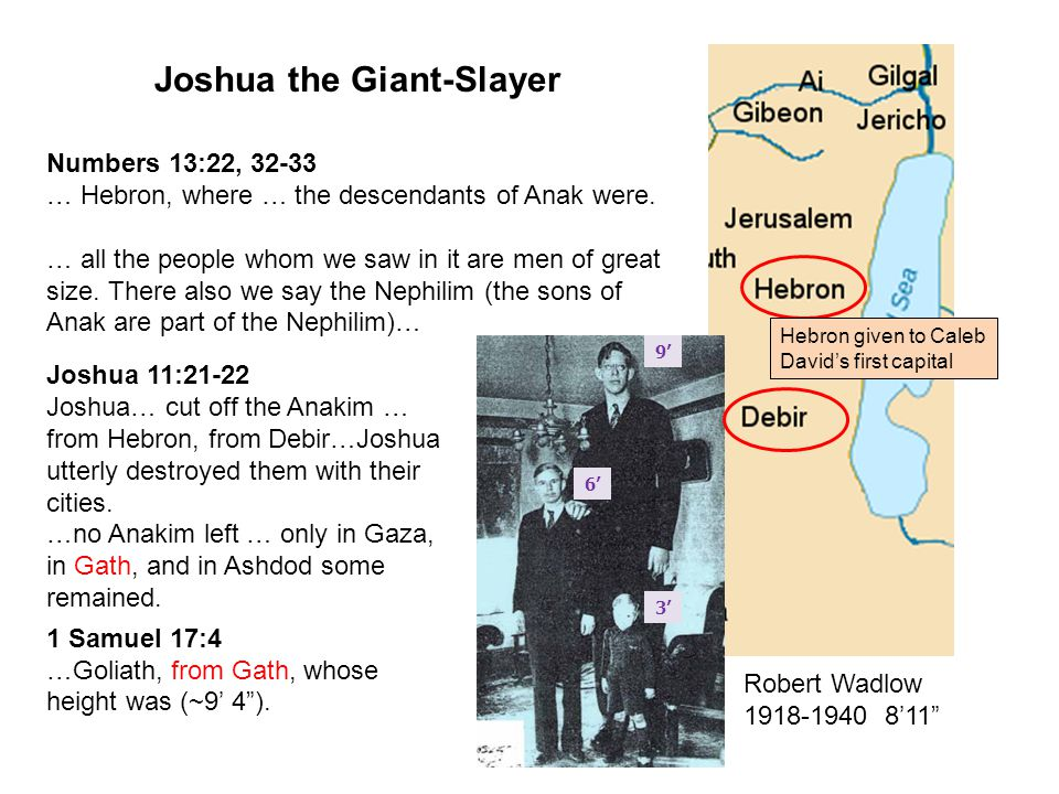 1 2 3 4 5 6 7 Joshua the Giant-Slayer Numbers 13:22, 32-33 … Hebron, where … the descendants of Anak were. … all the people whom we saw in it are men