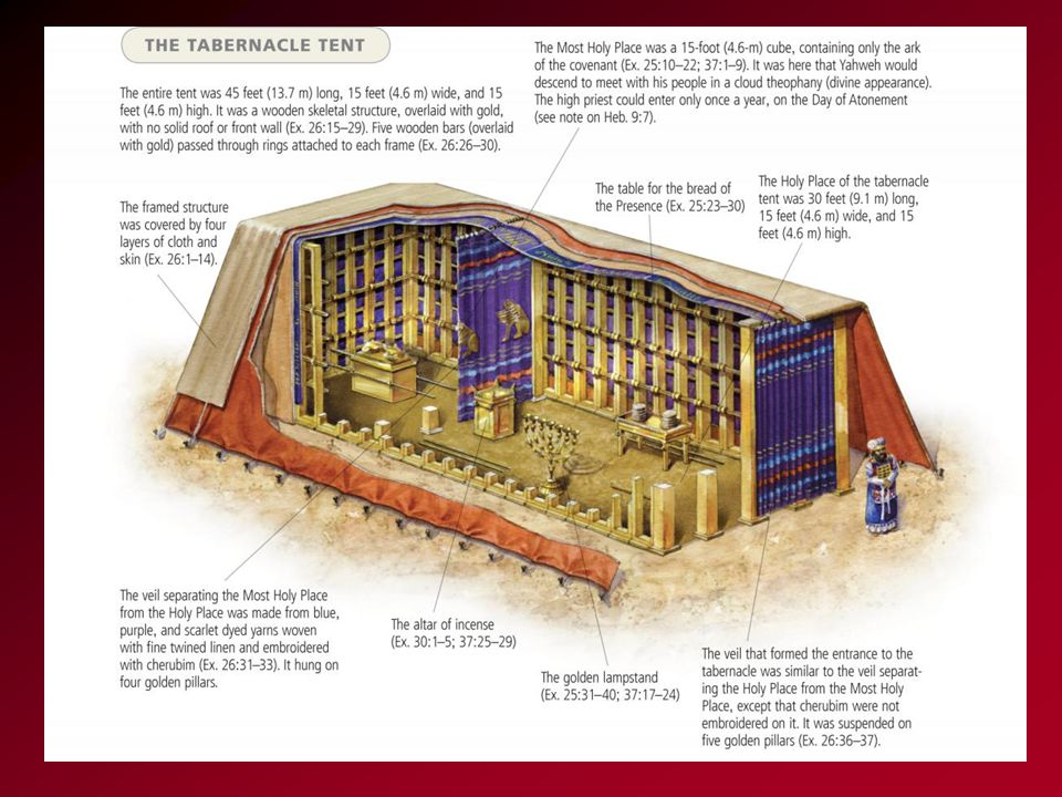 the SIZE of the Tabernacle 45 feet long 15 feet wide 15 feet high About 3 school buses
