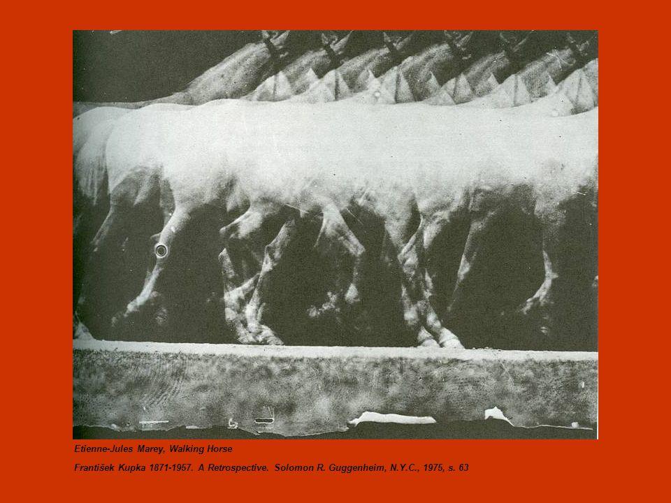 Etienne-Jules Marey, Walking Horse František Kupka 1871-1957.