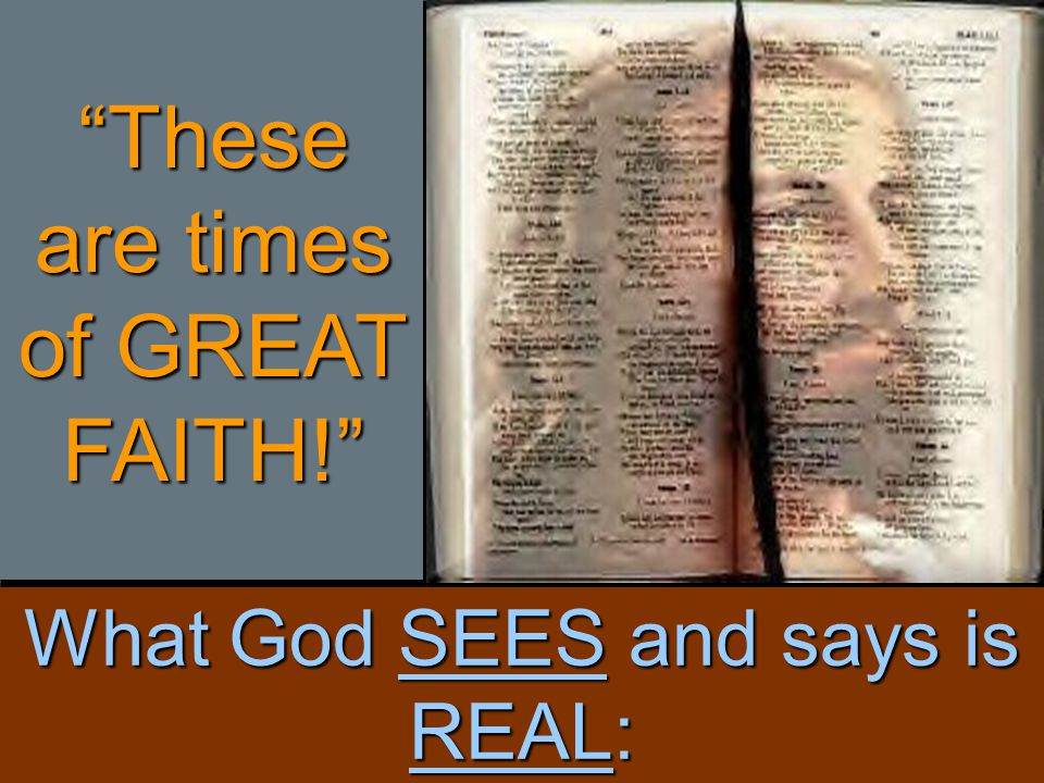 the serpentGenesis 3:1 Now the serpent was more subtil than any beast of the field which the LORD God had made.