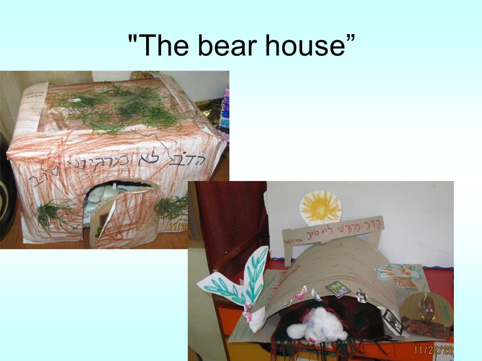 The bear house""