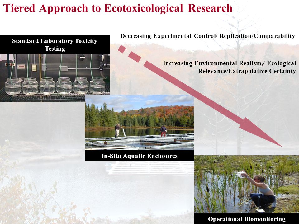 Tiered Approach to Ecotoxicological Research Standard Laboratory Toxicity Testing In-Situ Aquatic Enclosures Operational Biomonitoring Increasing Environmental Realism,/ Ecological Relevance/Extrapolative Certainty Decreasing Experimental Control/ Replication/Comparability