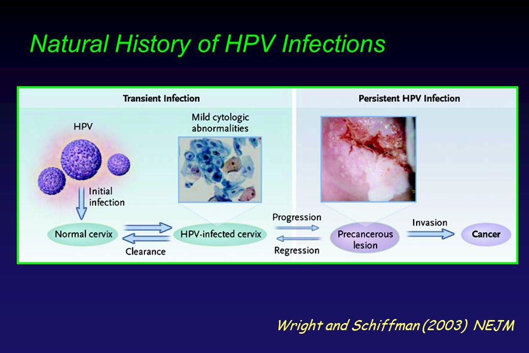 HPV by PCR CIN3 + 0 % 5 % 10 % 15 % 20 % 25 % 18- 19 20- 24 25- 29 30- 34 25- 29 20- 24 18- 19 35- 50 30- 34 35- 50 Kulasingham SL et al JAMA 2002;288:1749-57.
