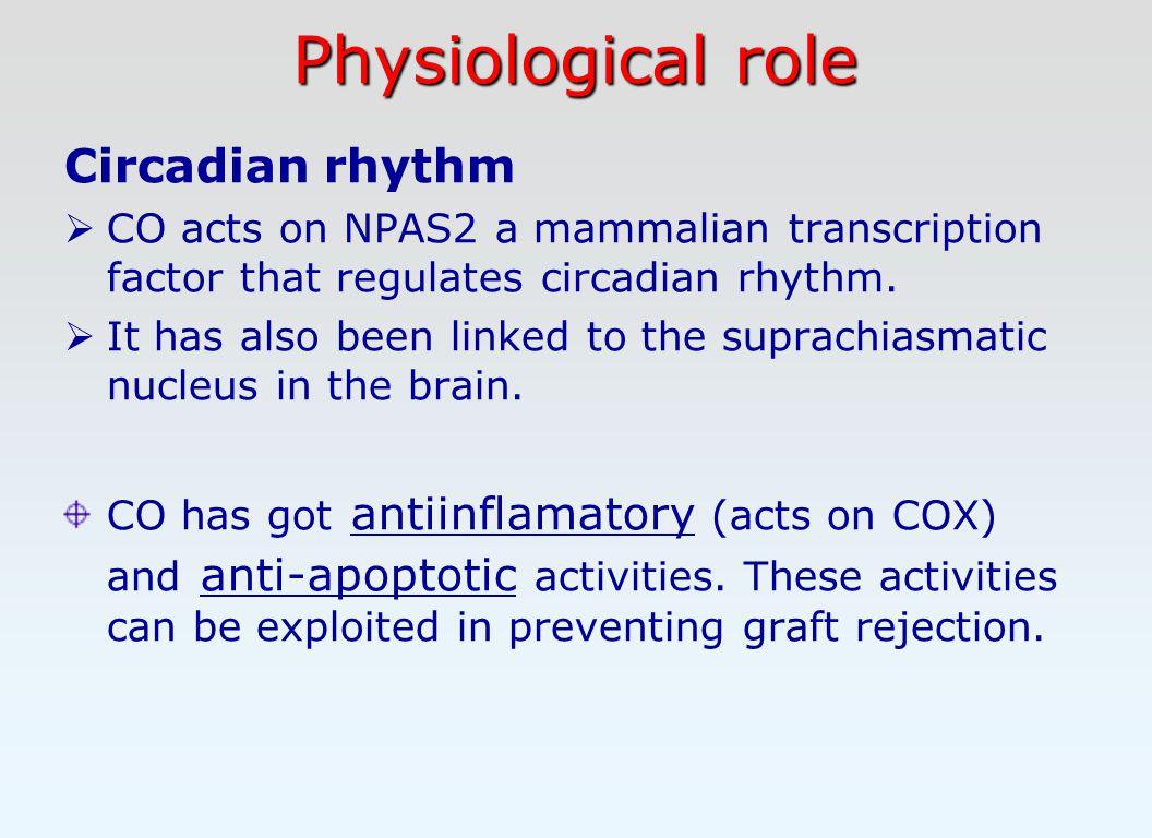 Physiological role Circadian rhythm  CO acts on NPAS2 a mammalian transcription factor that regulates circadian rhythm.