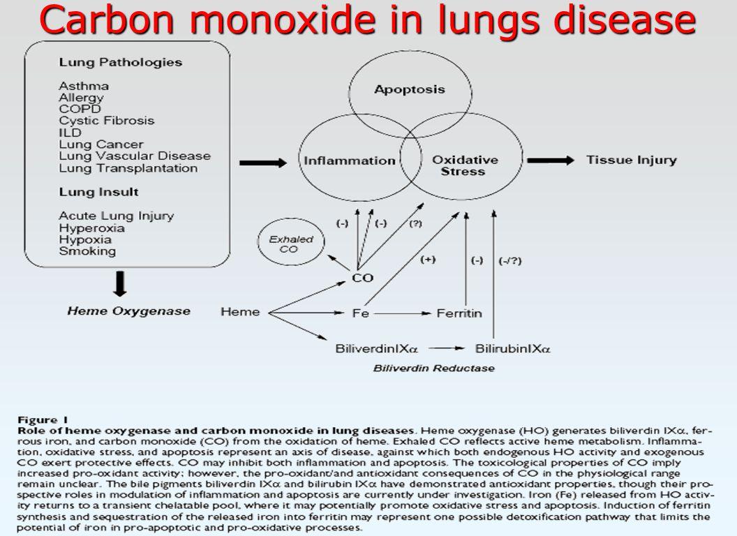 Carbon monoxide in lungs disease