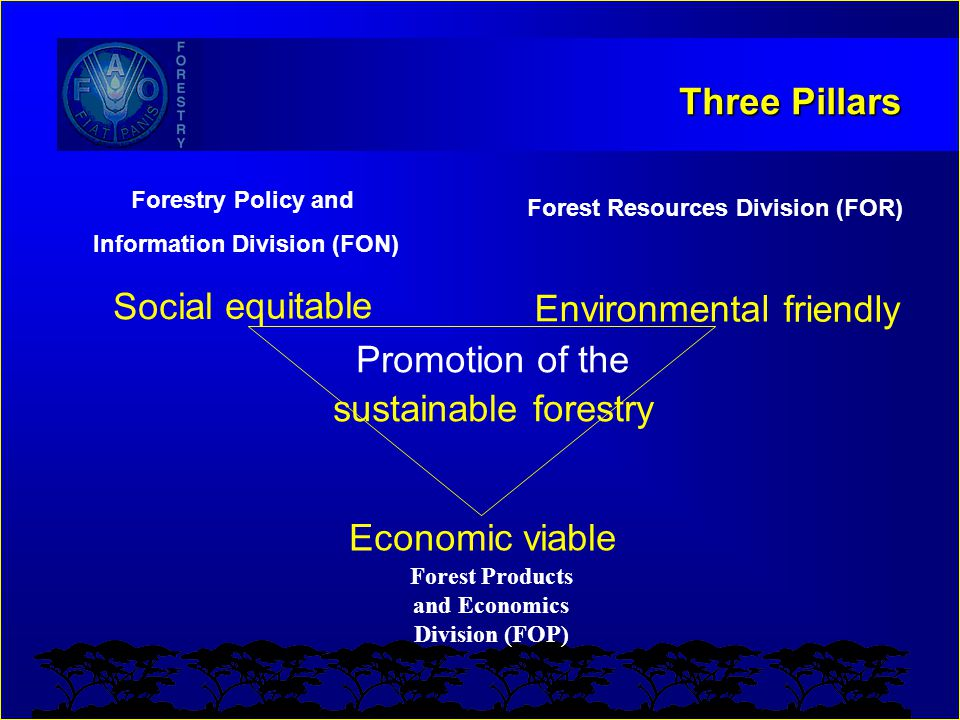 Three Pillars Promotion of the sustainable forestry Social equitable Environmental friendly Economic viable Forest Products and Economics Division (FO