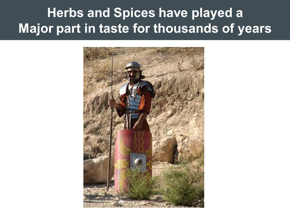Herbs and Spices have played a Major part in taste for thousands of years
