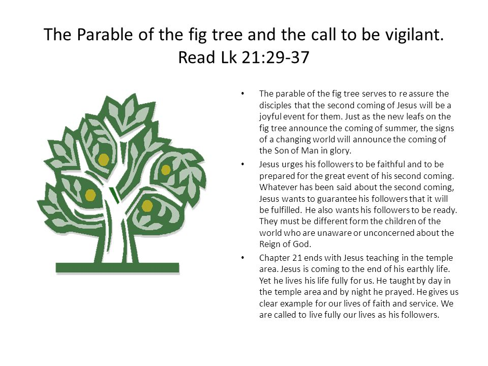 The Parable of the fig tree and the call to be vigilant.