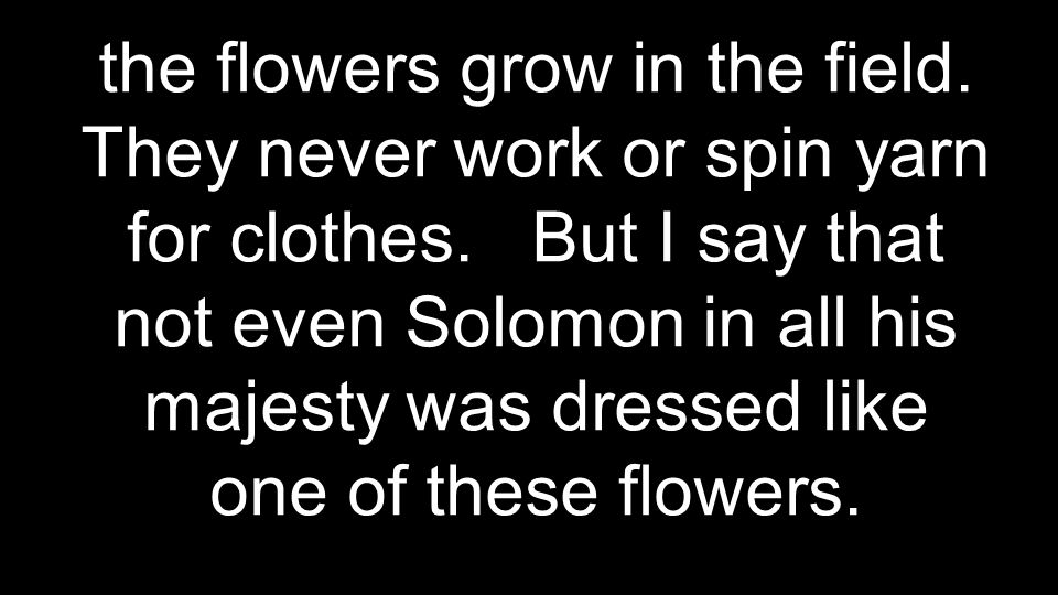 the flowers grow in the field. They never work or spin yarn for clothes.
