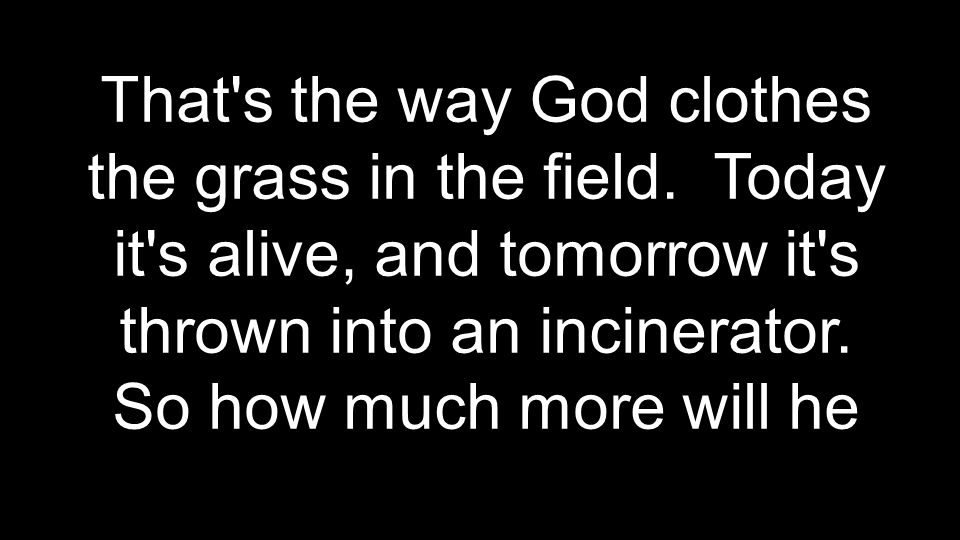 That s the way God clothes the grass in the field.