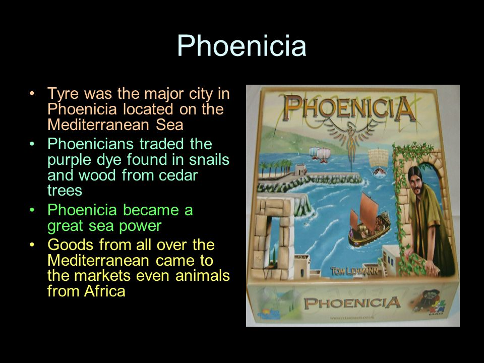 Phoenicia Tyre was the major city in Phoenicia located on the Mediterranean Sea Phoenicians traded the purple dye found in snails and wood from cedar