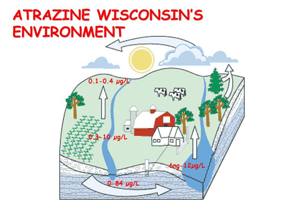 ATRAZINE WISCONSIN'S ENVIRONMENT 0.1-0.4 µg/L 6ng-12µg/L 0-84 µg/L 0.3-10 µg/L