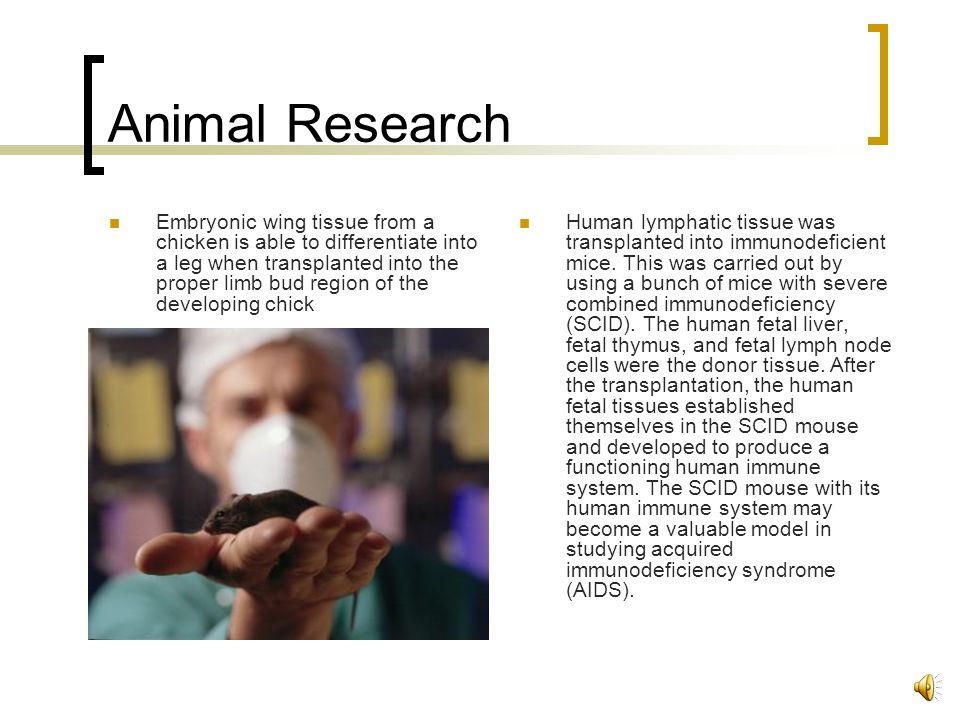 Research Fetal tissue obtained through induced abortion is highly suitable for research because it is free of: -major genetic abnormalities -bacterial infections Research with animals shows great promise for curing once incurable diseases in the past: -Parkinson's Disease, Alzheimer's, Huntington's, chorea, strokes, spinal cord injuries, hemophilia, leukemia, sickle cell anemia, muscular dystrophy