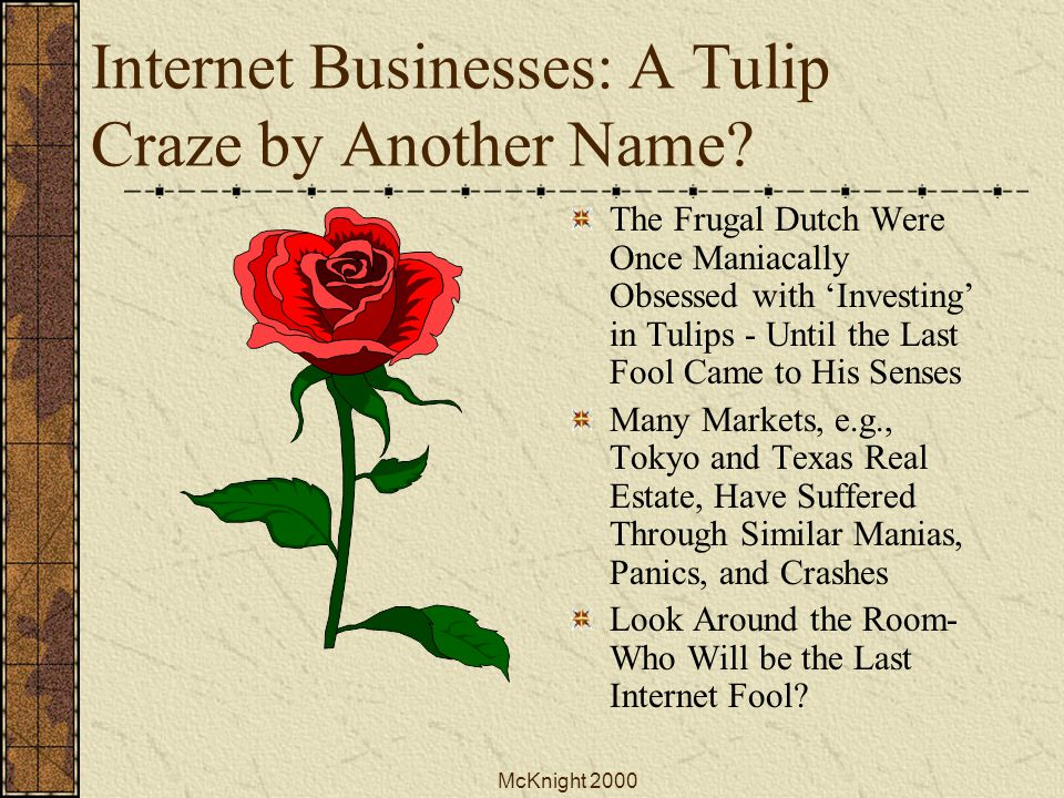 McKnight 2000 Internet Businesses: A Tulip Craze by Another Name.