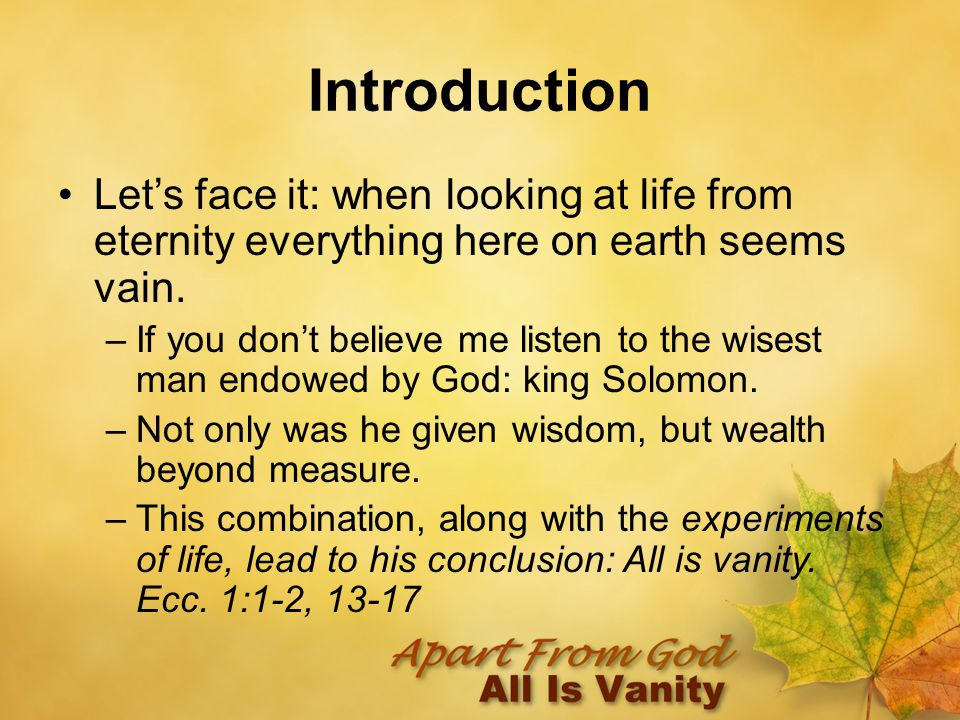 Introduction Let's face it: when looking at life from eternity everything here on earth seems vain.