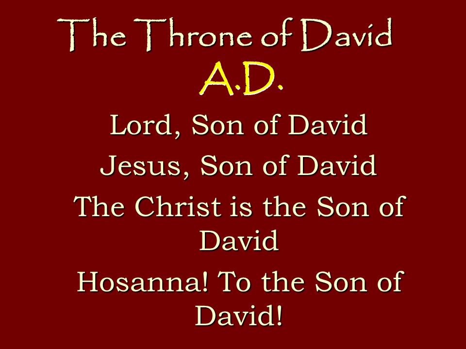 The Throne of David Lord, Son of David Jesus, Son of David The Christ is the Son of David Hosanna.