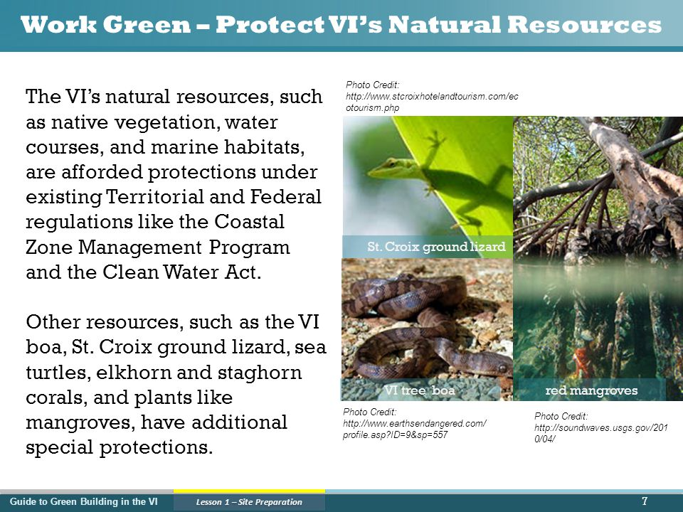 Guide to Green Building in the VI Lesson 1 – Site Preparation Work Green – Protect VI's Natural Resources 7 The VI's natural resources, such as native vegetation, water courses, and marine habitats, are afforded protections under existing Territorial and Federal regulations like the Coastal Zone Management Program and the Clean Water Act.