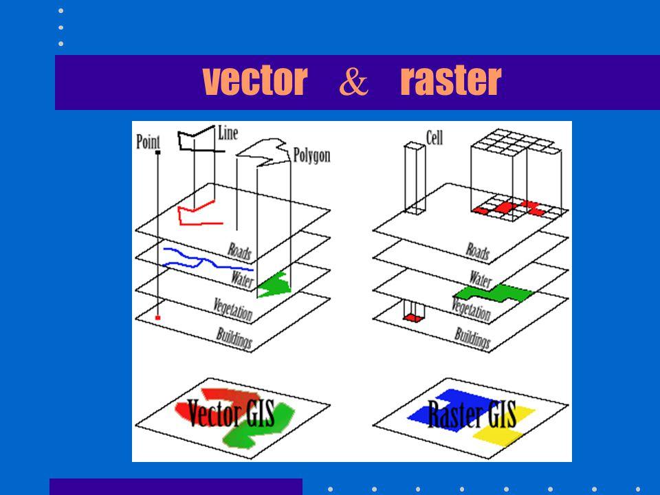 vector & raster