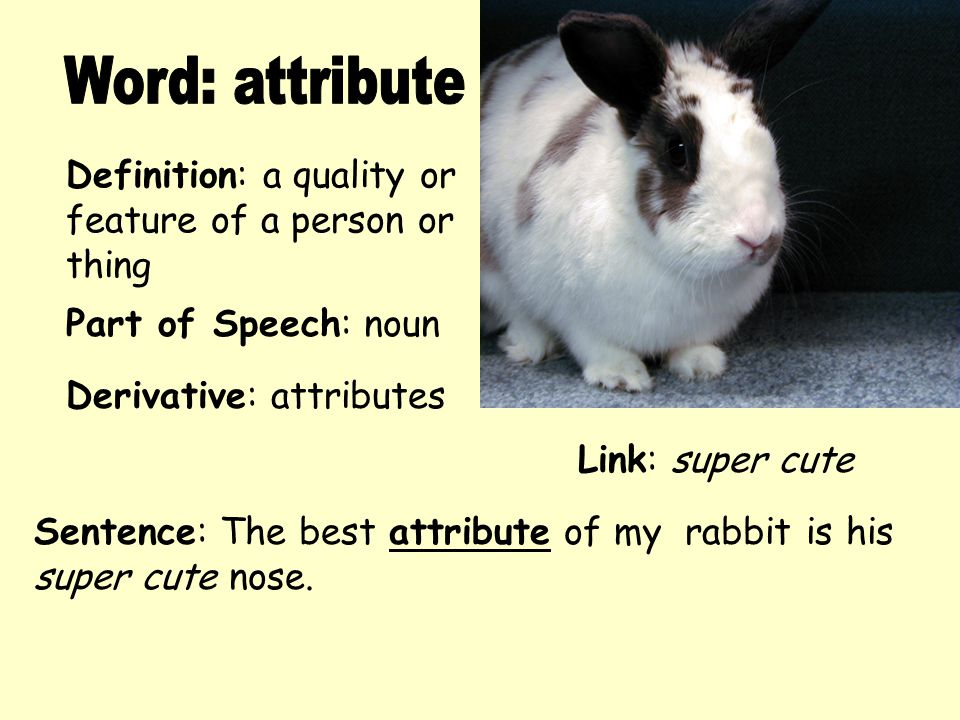 Definition: a quality or feature of a person or thing Derivative: attributes Sentence: The best attribute of my rabbit is his super cute nose. Part of