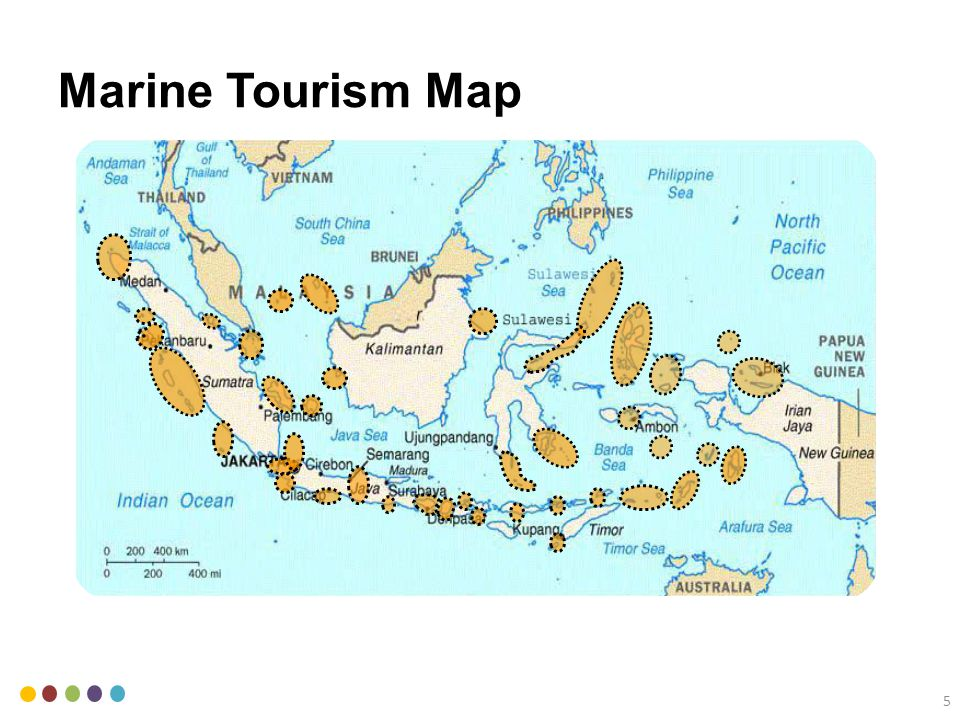 Indonesia is part of Coral Triangle with more than 500 species of corals.