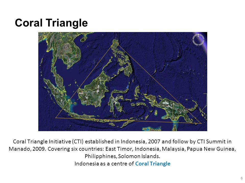 Coral Triangle 6 Coral Triangle Initiative (CTI) established in Indonesia, 2007 and follow by CTI Summit in Manado, 2009.