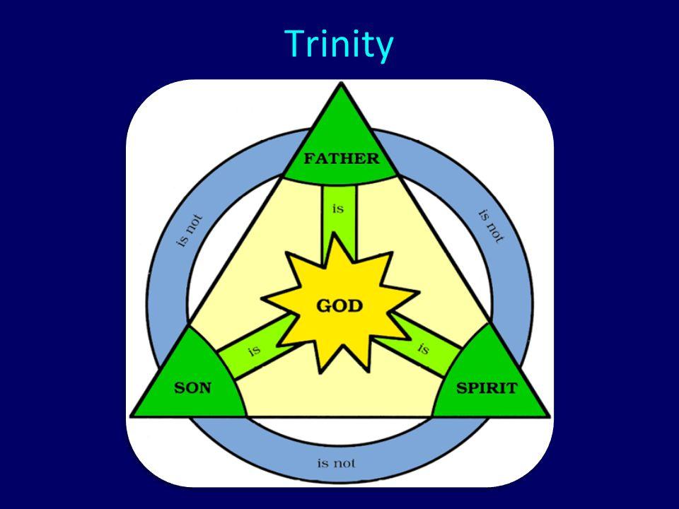 Introduction of Servant-hood Role Models (Philip 2:5-30) A.Christ (2:5-12) B.Paul (2:17-18) C.Timothy (2:19-24) D.Epaphroditus (2:25-30)
