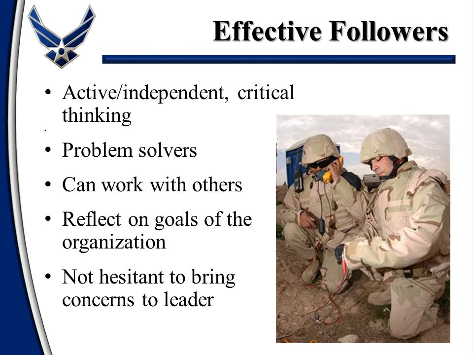 13 Active/independent, critical thinking Problem solvers Can work with others Reflect on goals of the organization Not hesitant to bring concerns to leader Effective Followers