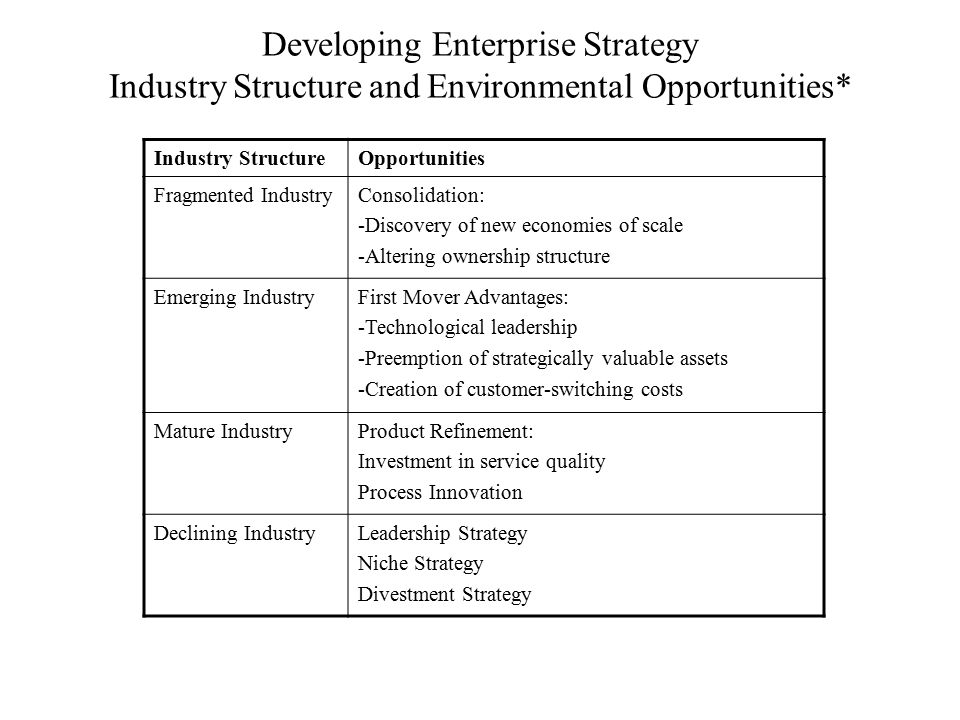 Developing Enterprise Strategy Industry Structure and Environmental Opportunities* Industry StructureOpportunities Fragmented IndustryConsolidation: -