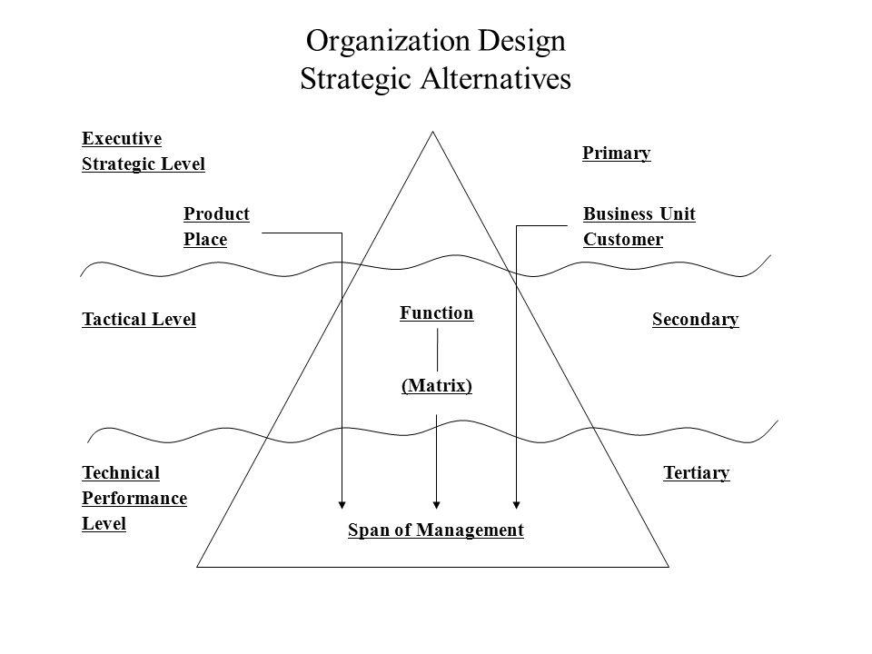 Organization Design Strategic Alternatives Executive Strategic Level Product Place Tactical Level Technical Performance Level Primary Business Unit Cu