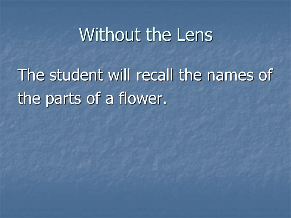 Without the Lens The student will recall the names of the parts of a flower.
