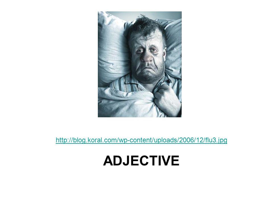 http://blog.koral.com/wp-content/uploads/2006/12/flu3.jpg ADJECTIVE