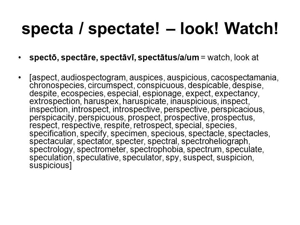 specta / spectate. – look. Watch.