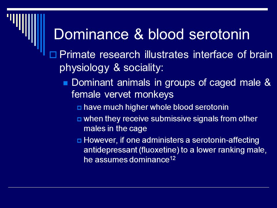 Dominance & blood serotonin  Primate research illustrates interface of brain physiology & sociality: Dominant animals in groups of caged male & female vervet monkeys  have much higher whole blood serotonin  when they receive submissive signals from other males in the cage  However, if one administers a serotonin-affecting antidepressant (fluoxetine) to a lower ranking male, he assumes dominance 12