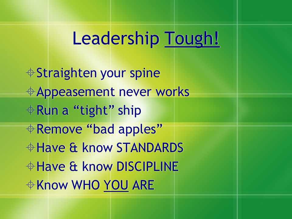 Successful Leaders are: 1.DISCIPLINED 2.ORGANIZED 3.PUNCTUAL 4.PERSISTANT 5.STRONG, VERY STRONG WORK ETHIC 6.PASSIONATE 7.SELF-MOTIVATED 1.DISCIPLINED 2.ORGANIZED 3.PUNCTUAL 4.PERSISTANT 5.STRONG, VERY STRONG WORK ETHIC 6.PASSIONATE 7.SELF-MOTIVATED