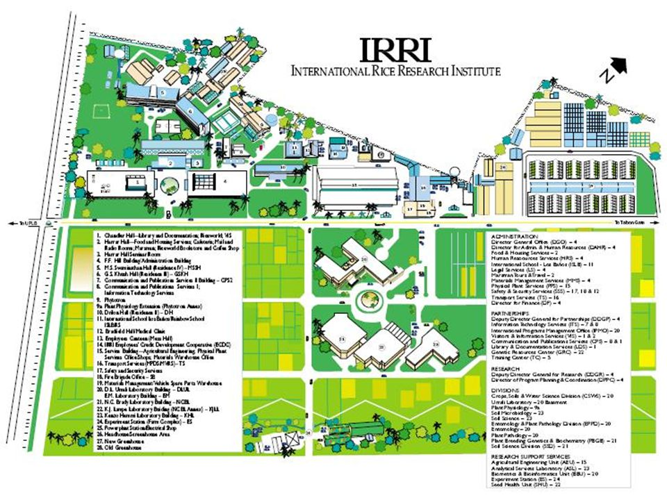 irri riceworld..is the world s only museum devoted to rice.