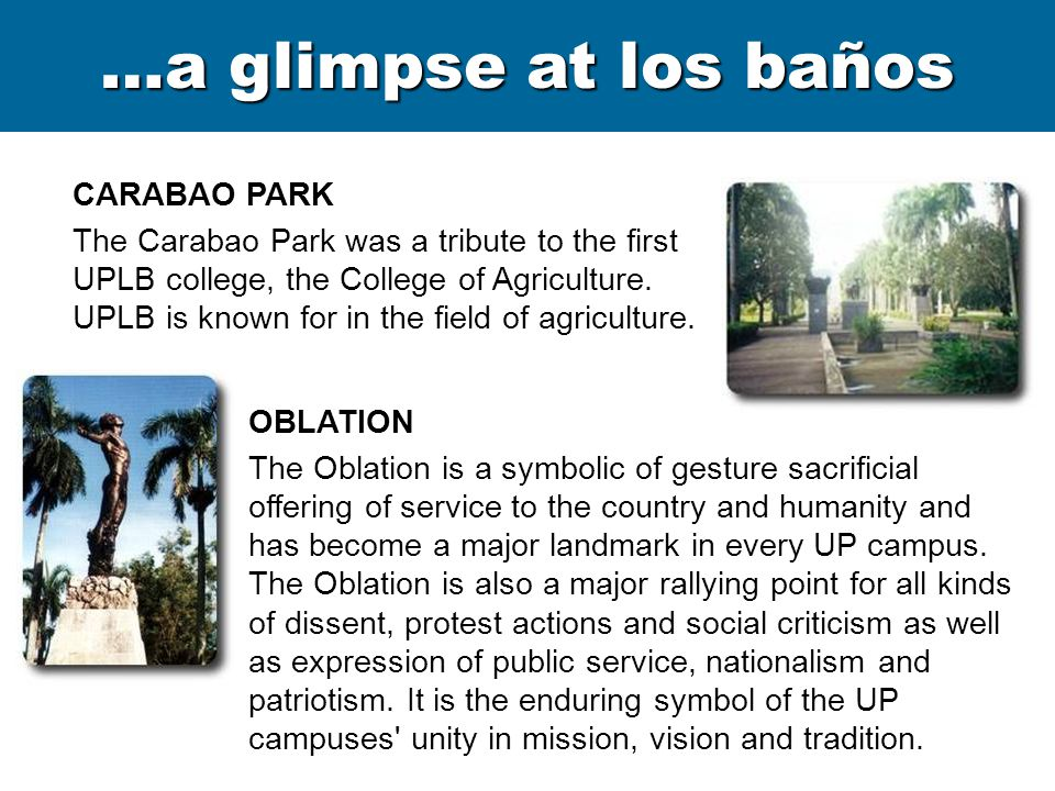 …a glimpse at los baños CARILLON The Carillon is believed to exemplify the alumni spirit and the UPLB s oneness with all UP campuses and with other universities emphasizing culture and arts.