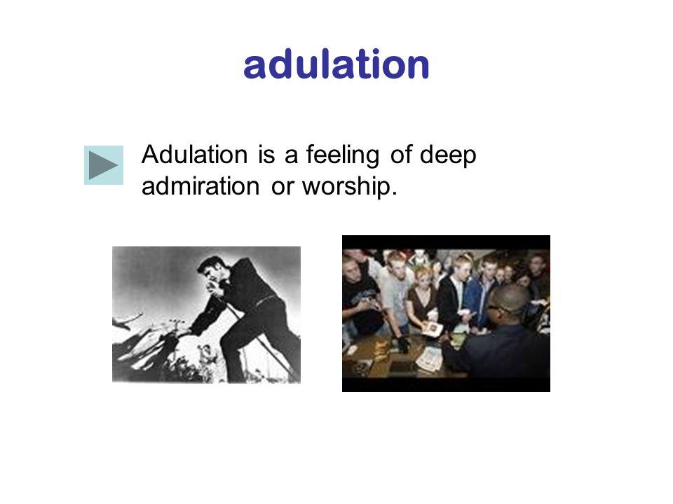 adulation Adulation is a feeling of deep admiration or worship.