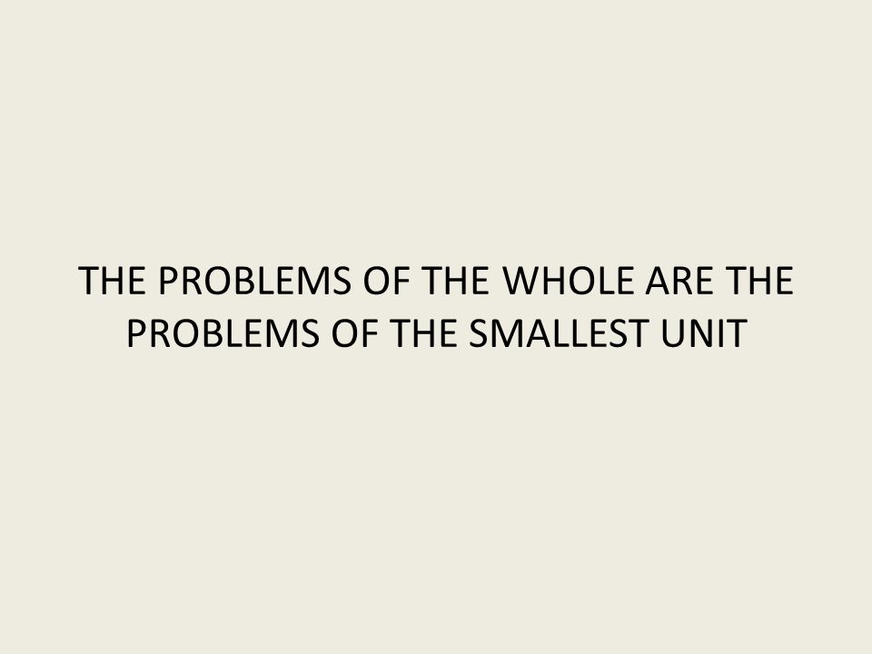 THE PROBLEMS OF THE WHOLE ARE THE PROBLEMS OF THE SMALLEST UNIT