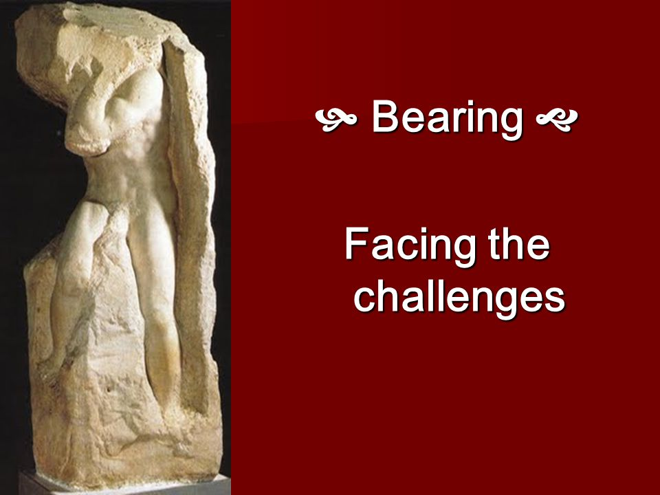  Bearing  Facing the challenges