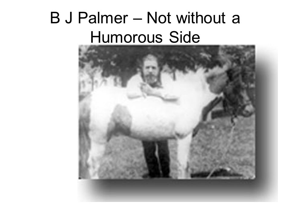 B J Palmer – Not without a Humorous Side