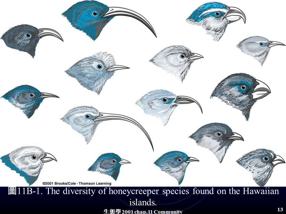 生態學 2001 chap.11 Community structure 12 Niche specialization and extinction A highly specialized niche makes a species vulnerable to competitive effects, particularly from exotic species introduced into the habitat.