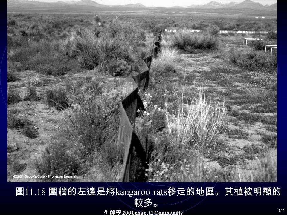 生態學 2001 chap.11 Community structure 16 範例: Kangaroo rats in a desert 移走 kangaroo rats ,經過 12 年。 植被有顯著的改變 ( 圖 11.18) 。 Annual and perennial grasses colonized and increased three fold in the removal plots (Fig.